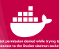 Got permission denied while trying to connect to the Docker daemon socket